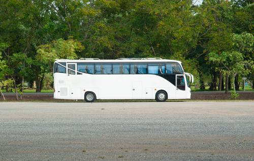 charter company, Houston Party Bus