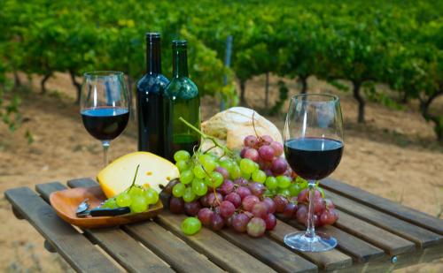 wine tours, Charter Bus Rental Texas