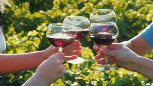 Wine Tasting Tour, Motorcoach Wine Tour